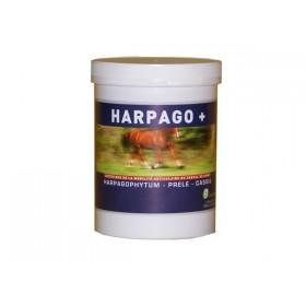 Greenpex Harpago +