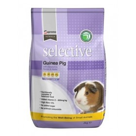 SELECTIVE GUINEA PIG (COCHON D'INDE)