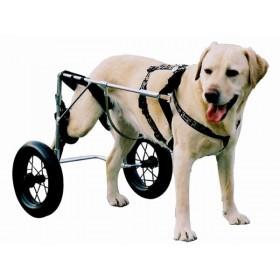 Genia Chariot Canis-mobile pour chien paralysé du train arrière