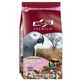 PREMIUM AFRICAN PERROQUETS LORO PARQUE MIX