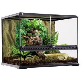 Terrarium en verre pour reptiles et amphibiens