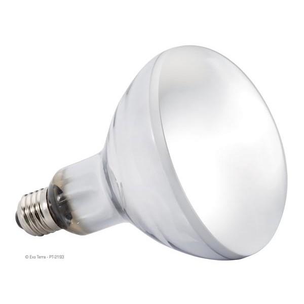 Matériels Ampoule Solar Glo UVA/UVB pour reptiles