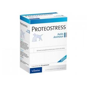 Wamine Proteostress PA