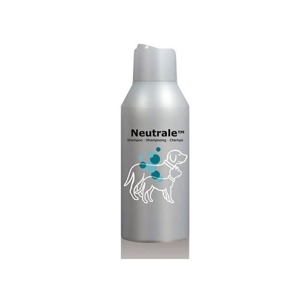 Specific - Dechra Dechra DermAllay Neutrale Shampoing