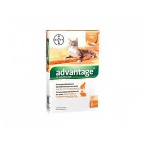 Bayer Advantage 40 Chat ou Lapin de moins de 4 kg