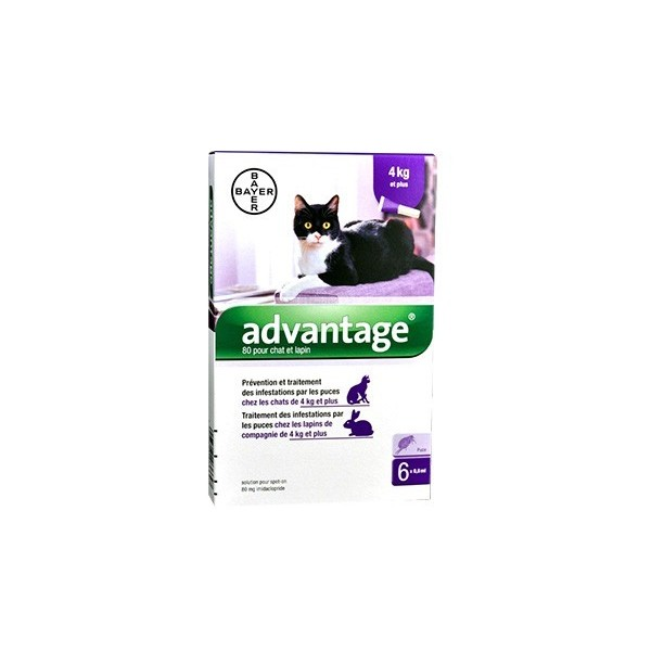 Bayer Advantage 80 Chat ou Lapin de plus de 4 kg