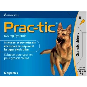 Novartis Prac-Tic 625 mg Grand Chien