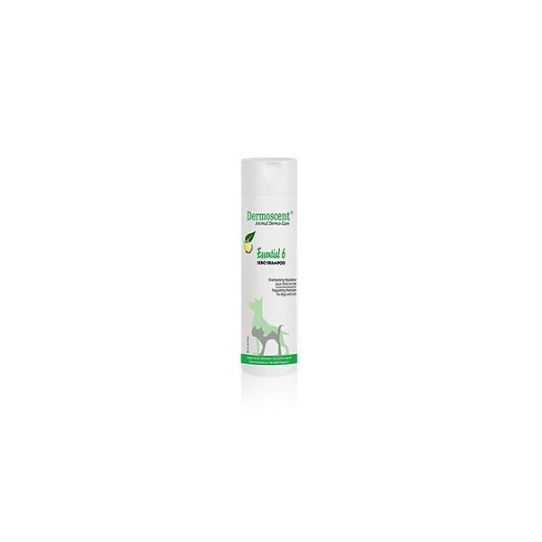 Zootech Bimeda-Zootech Dermoscent Essential 6 Sebo Shampoing