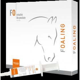 Lencare Foaling