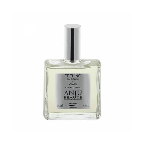 Hami Form Sarl Socec Parfum Anju Feeling Vanille