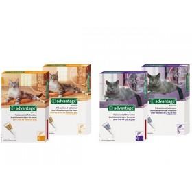 Bayer Advantage 40 Chat ou Lapin de moins de 4 kg