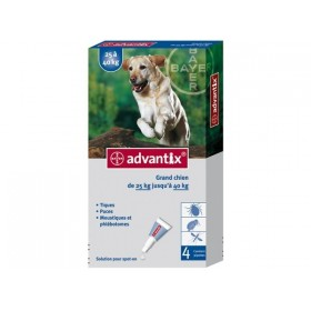 Bayer Advantix Grand Chien