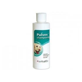 Pulvex Shampoing