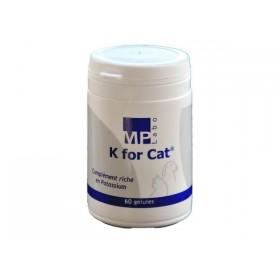 K FOR CAT