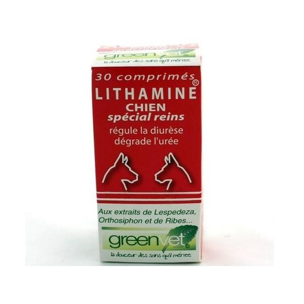Lithamine Chien
